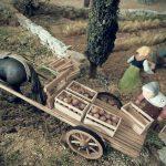 le champ de pomme de terre